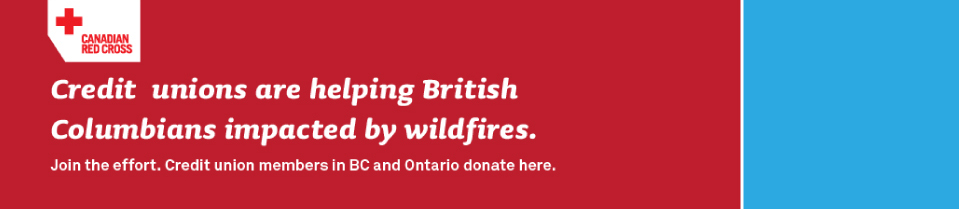 Donate to Red Cross Wildfires